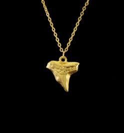 χρυσο δοντι καρχαρια κρεμαστο