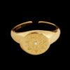 Σεβαλιέ δαχτυλίδι χρυσο με ζιργκον